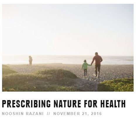 REI blog: Prescribing Nature for Health